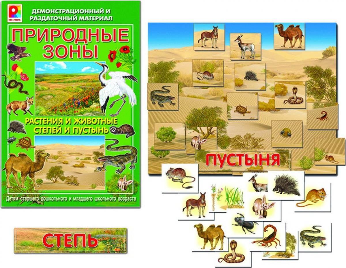 Животные и растения степи картинки 3